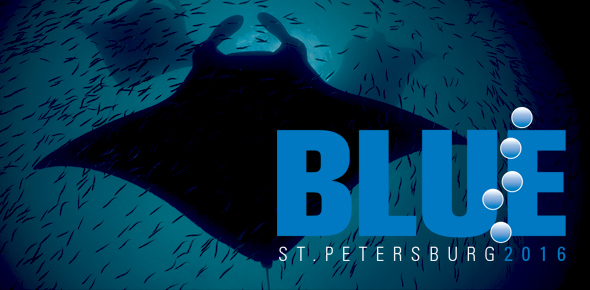 The 6th BLUE Ocean Film Festival & Conservation Summit